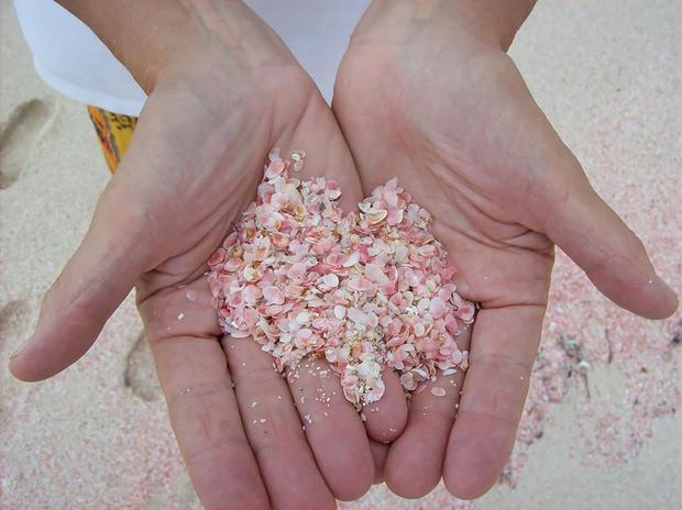 Розовият пясък на плаж на Бахамите