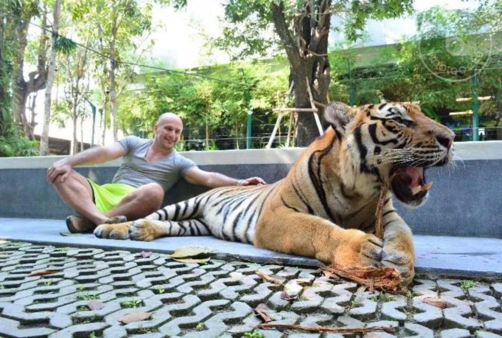 Димитър Владиков храни бебе тигърче с биберон
